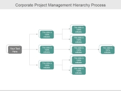 Corporate Project Management Hierarchy Process Ppt PowerPoint Presentation Show