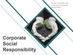 Corporate Social Responsibility Ppt PowerPoint Presentation Infographics Professional