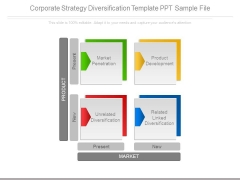 Corporate Strategy Diversification Template Ppt Sample File