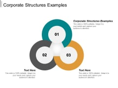 Corporate Structures Examples Ppt PowerPoint Presentation Summary Guide Cpb