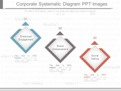 Corporate Systematic Diagram Ppt Images