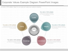 Corporate Values Example Diagram Powerpoint Images