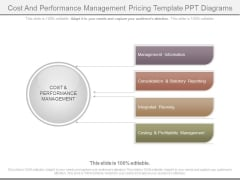 Cost And Performance Management Pricing Template Ppt Diagrams