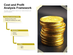 Cost And Profit Analysis Framework Ppt PowerPoint Presentation Gallery Background PDF