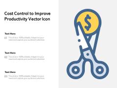Cost Control To Improve Productivity Vector Icon Ppt PowerPoint Presentation Gallery Portfolio PDF