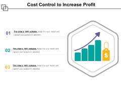 Cost Control To Increase Profit Ppt PowerPoint Presentation Infographics Guidelines PDF