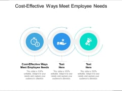 Cost Effective Ways Meet Employee Needs Ppt PowerPoint Presentation Pictures Graphic Tips Cpb