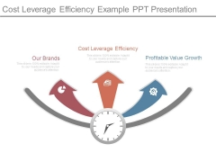 Cost Leverage Efficiency Example Ppt Presentation