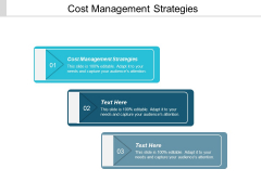 Cost Management Strategies Ppt PowerPoint Presentation Ideas Example Introduction Cpb
