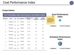 Cost Performance Index Ppt PowerPoint Presentation Portfolio Examples