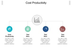 Cost Productivity Ppt Powerpoint Presentation File Show Cpb