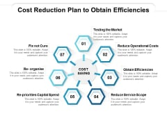 Cost Reduction Plan To Obtain Efficiencies Ppt PowerPoint Presentation Icon Design Templates