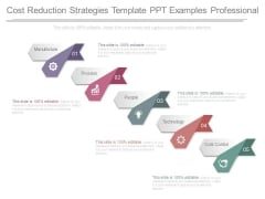 Cost Reduction Strategies Template Ppt Examples Professional