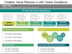 Creative Visual Resume CV With Career Excellence Ppt PowerPoint Presentation Show Gridlines PDF