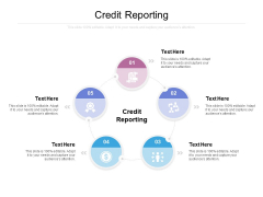 Credit Reporting Ppt PowerPoint Presentation Layouts Guidelines Cpb