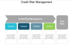 Credit Risk Management Ppt Powerpoint Presentation Styles Inspiration Cpb