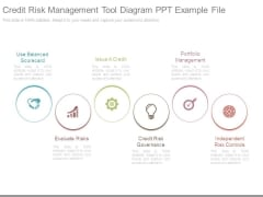 Credit Risk Management Tool Diagram Ppt Example File