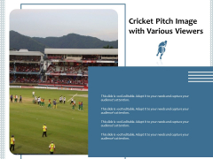 Cricket Pitch Image With Various Viewers Ppt PowerPoint Presentation Gallery Vector PDF