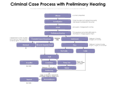 Criminal Case Process With Preliminary Hearing Ppt PowerPoint Presentation File Formats PDF