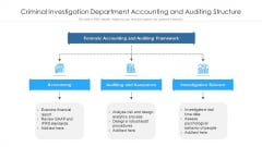 Criminal Investigation Department Accounting And Auditing Structure Ppt PowerPoint Presentation File Picture PDF