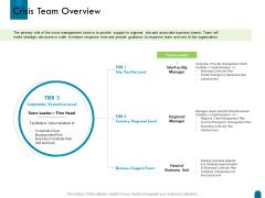 Crisis Management Crisis Team Overview Ppt Professional Template PDF