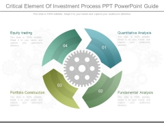 Critical Element Of Investment Process Ppt Powerpoint Guide
