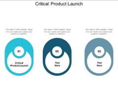 Critical Product Launch Ppt PowerPoint Presentation Gallery Slide Download Cpb