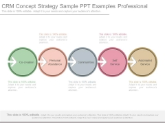 Crm Concept Strategy Sample Ppt Examples Professional
