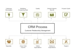 Crm Process Ppt PowerPoint Presentation Pictures Layout Ideas