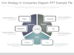 Crm Strategy In Companies Diagram Ppt Example File