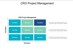 Cro Project Management Ppt PowerPoint Presentation Icon Tips Cpb