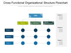 Cross Functional Organizational Structure Flowchart Ppt PowerPoint Presentation Icon Portfolio PDF