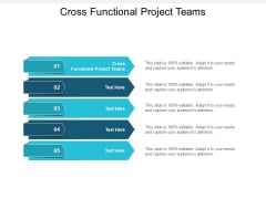 Cross Functional Project Teams Ppt PowerPoint Presentation Icon Inspiration Cpb