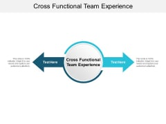 Cross Functional Team Experience Ppt PowerPoint Presentation Styles Graphics Pictures Cpb