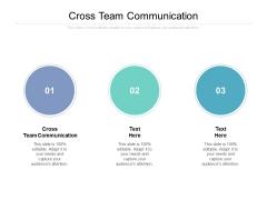 Cross Team Communication Ppt PowerPoint Presentation Outline Grid Cpb