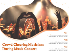 Crowd Cheering Musicians During Music Concert Ppt PowerPoint Presentation Layouts Backgrounds PDF