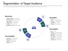 Crowd Sourced Equity Funding Pitch Deck Segmentation Of Target Audience Ppt Slides File Formats PDF