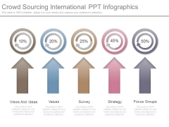Crowd Sourcing International Ppt Infographics