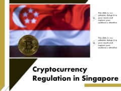 Cryptocurrency Regulation In Singapore Ppt PowerPoint Presentation Ideas Layout PDF