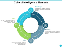 Cultural Intelligence Elements Ppt PowerPoint Presentation Sample
