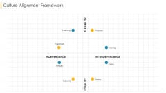 Culture Alignment Framework Diagrams PDF