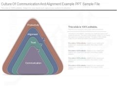 Culture Of Communication And Alignment Example Ppt Sample File