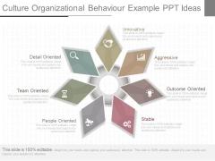Culture Organizational Behaviour Example Ppt Ideas