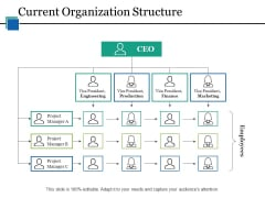 Current Organization Structure Ppt PowerPoint Presentation Portfolio Designs Download