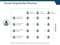 Current Organization Structure Ppt PowerPoint Presentation Show Vector