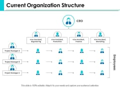 Current Organization Structure Ppt PowerPoint Presentation Summary Visual Aids