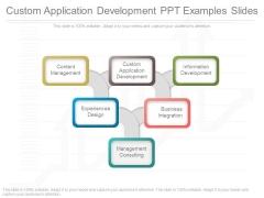 Custom Application Development Ppt Examples Slides