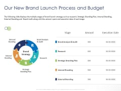 Customer 360 Overview Our New Brand Launch Process And Budget Ppt Icon Files PDF