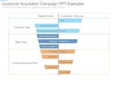 Customer Acquisition Campaign Ppt Examples