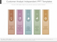 Customer Analyst Independent Ppt Templates